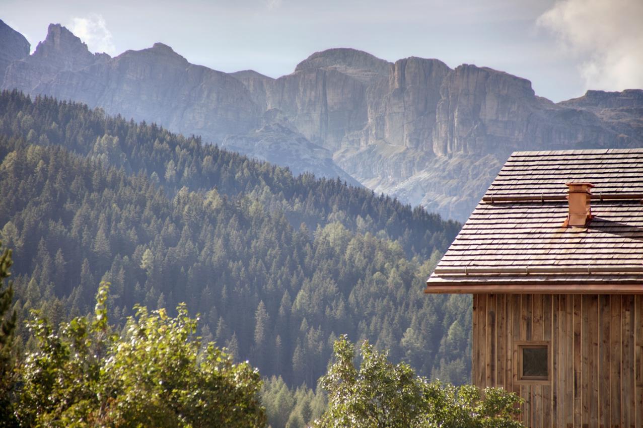 01-Ciasa_Turtia-Dolomites_IMG_0417